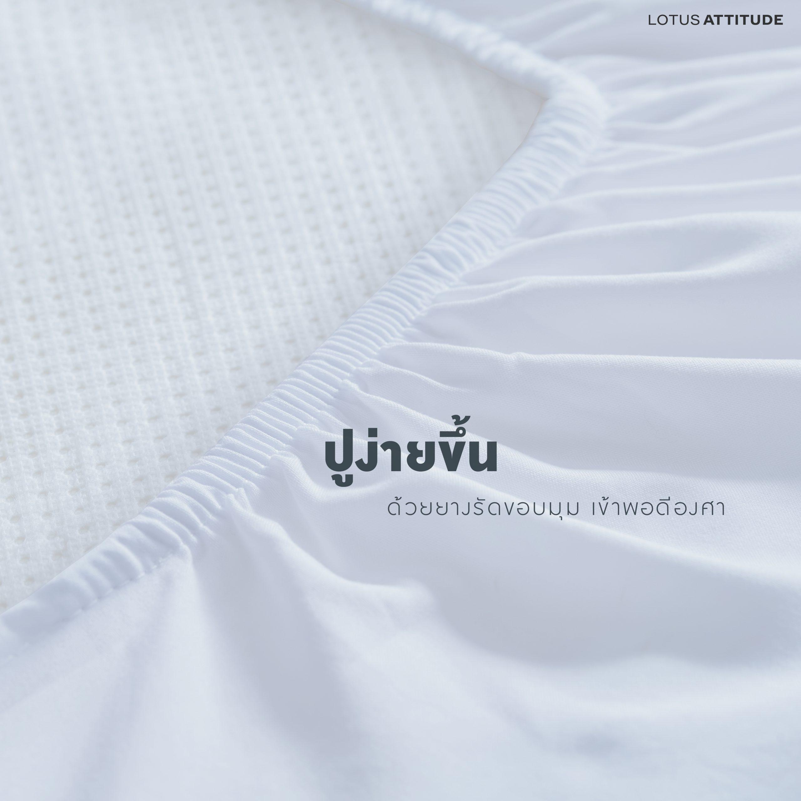 ผ้า LOTUS ATTITUDE อินโฟ_04